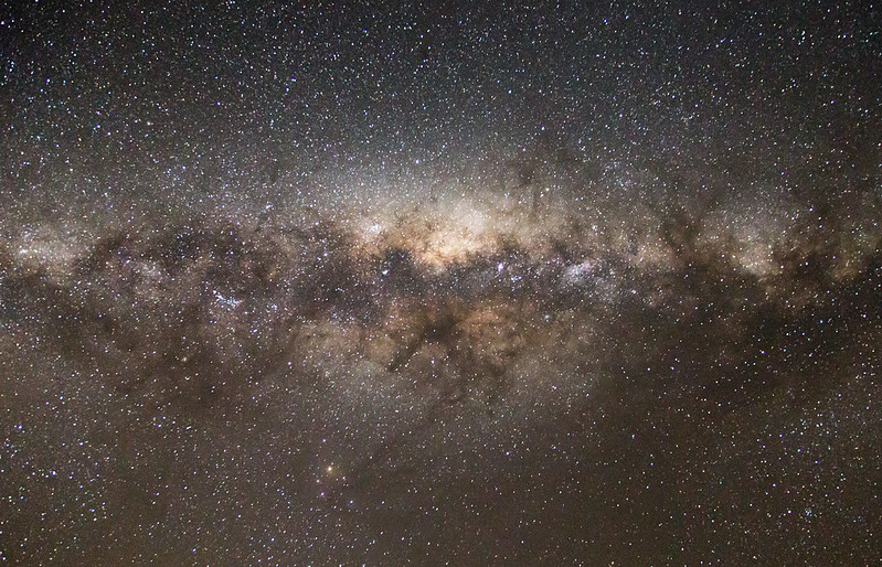 Prof. Warrant believes that Bogong moths naviagte in part by using the Milky Way as a guide. Image credit - Dave Young/Flickr, licenced under CC BY 2.0