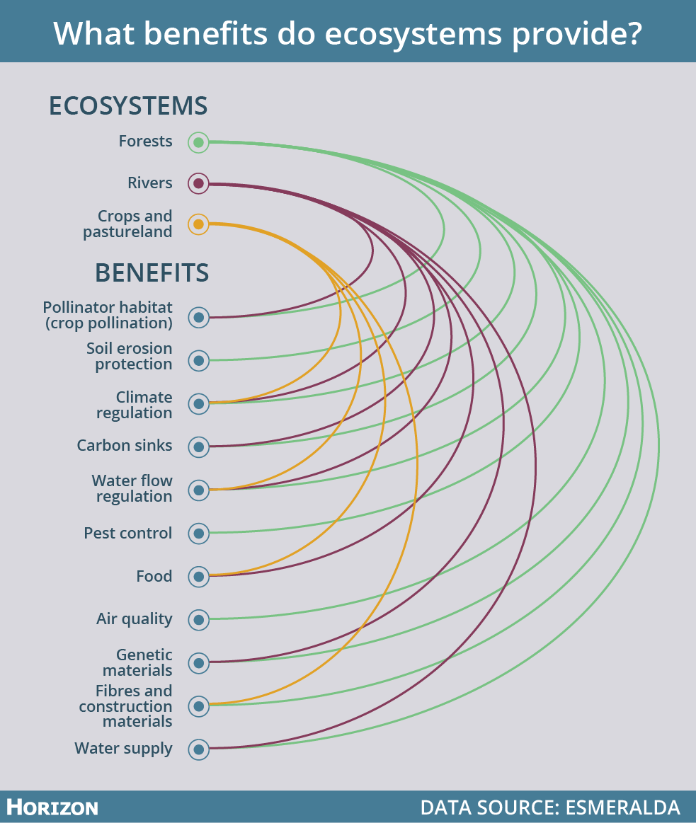 Ecosystems provide us with many of our basic needs, such as clean air, food and water. Image credit - Horizon