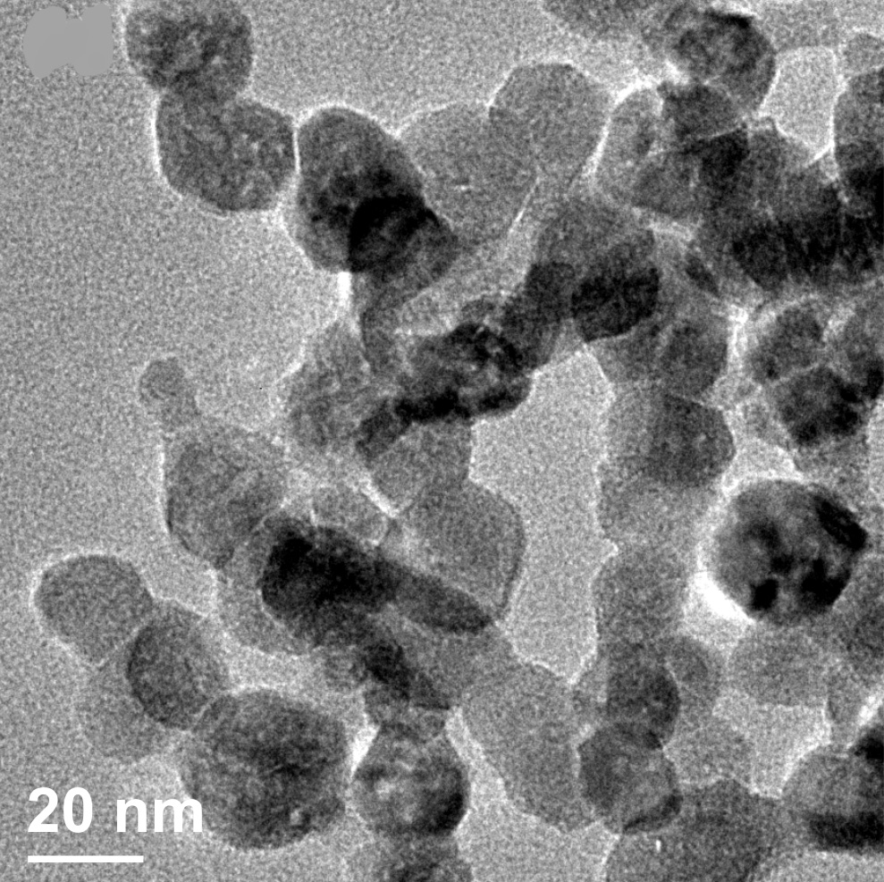 Scientists are creating 20nm-wide crystals of zinc oxide and encasing them in 'biological camouflage' so that they can kill cancer cells from the inside. Image credit - Valentina Cauda/ TNHLab