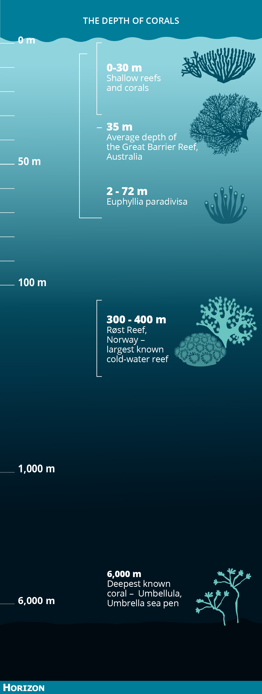 The depth beyond 100 metres is not to scale. Image credit - Horizon