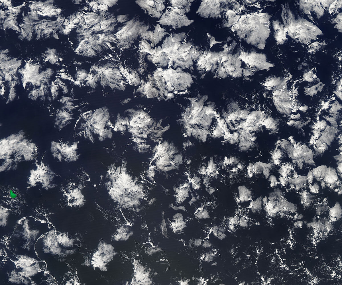 Prof. Siebesma wants to understand whether different cloud shapes like those that resemble gravel, popcorn or these flower-like structures, will change with warmer temperatures. Image credit - NASA Worldview