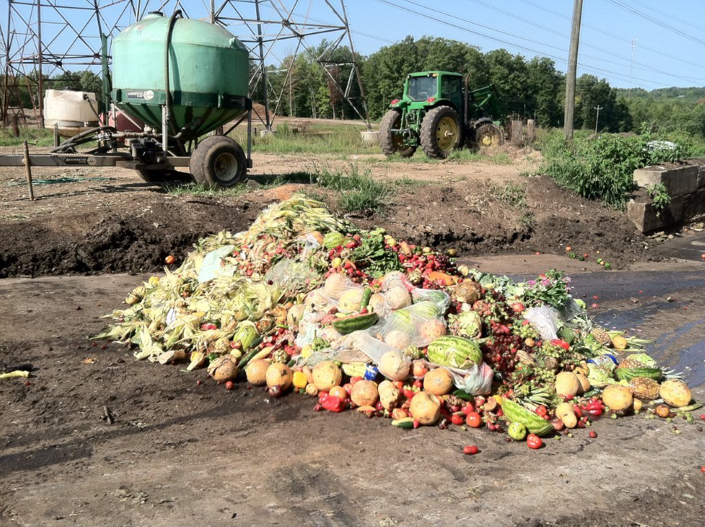 In a sustainable food system, you would not produce more food than you need, says Prof. Jackson. Image credit - USEPA Environmental-Protection-Agency/lFlickr, licenced under CC0