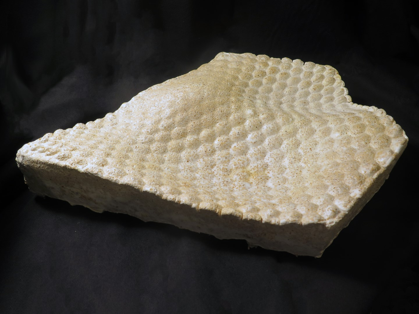 A creamy-coloured, slightly bumpy and curved panel created from a mould