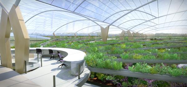 Under The Dome Multi Storey Farms Bring Crops Livestock