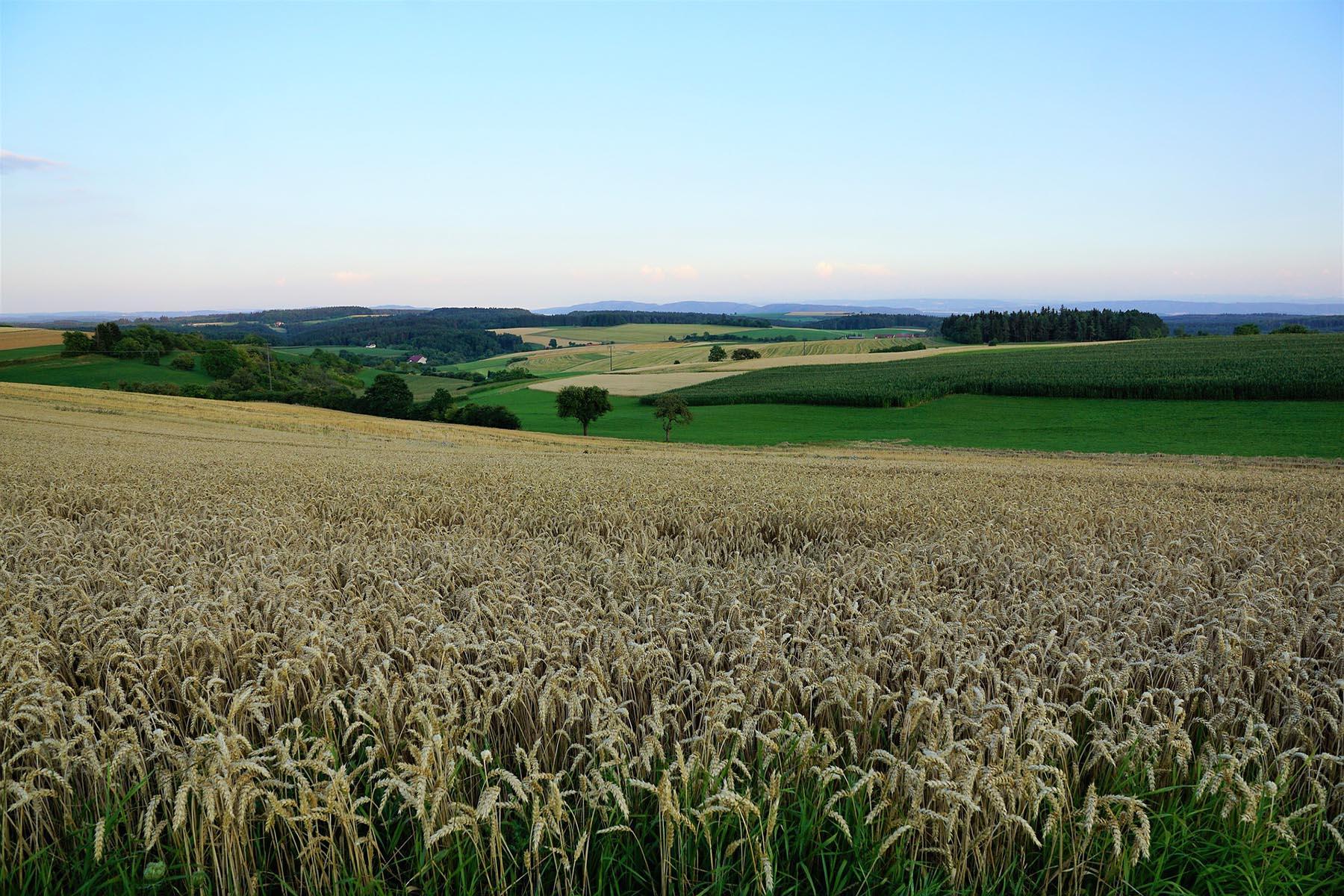 """Image result for land"""""""