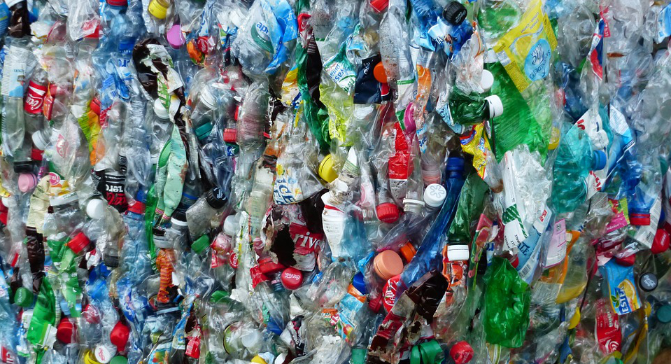 Plastic-eating bacteria offer recipe against recycling