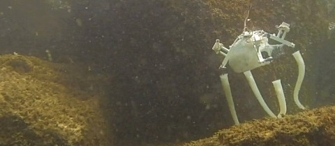 Researchers are creating a robot that can scour the ocean floor and swim like an octopus. Credit: Age of Robots, M. Brega