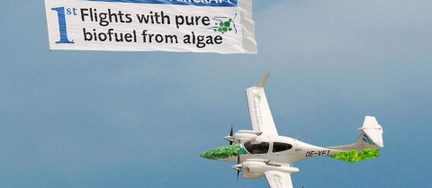 Biofuel can be produced from algae. At the Farnborough Airshow 2010, the European Aeronautic Defence and Space company (EADS) showcased flights of an aircraft powered by pure biofuel made from this resource. © EADS