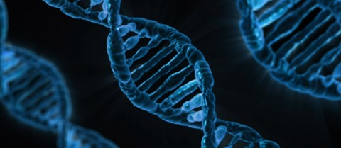 In recent years, the genetic defects behind about 5,000 of the estimated 7,000-8,000 rare diseases have been discovered, largely thanks to omics. Image credit - Pixabay/18042, licensed under CC0 Creative Commons