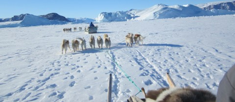 Measurement tools on dog sleds will tell researchers and the local Inuit population the ice thickness in northwest Greenland. Image courtesy of ICE-ARC