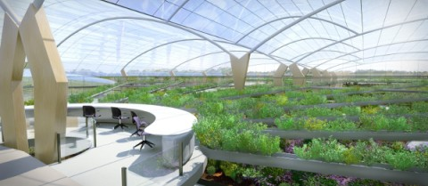 When it is developed, a Polydome will be a greenhouse that creates a mini ecosystem with crops and animals. Image courtesy of Except Integrated Sustainability