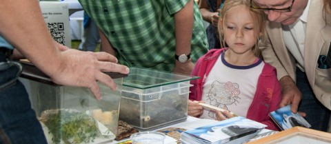 Citizens are learning how to contribute to science by collecting data. Credit: Entomologische Gesellschaft Orion-Berlin