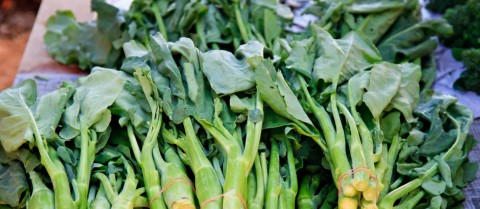 More than one in 10 people struggle to metabolise folate, a B vitamin found in green, leafy vegetables. Image: Shutterstock/canonzoom