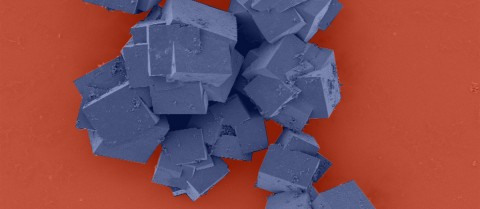 Metal-organic frameworks as seen under an electron microscope are made up of crystals that together shape multi-dimensional structures with vast surface areas. Image credit - CSIRO/ Dr Paolo Falcaro, Dr Dario Buso, licensed under CC BY 3.0 (colour changed)