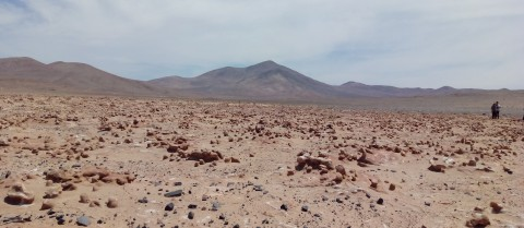 Researchers are using the notoriously dry environment of the Atacama desert in northern Chile to test sensors that could detect any potential Martian bacteria. Image courtesy of the NASA ARADS project.