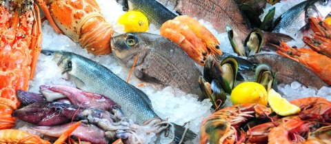 Rising sea temperatures and acidity levels can increase the level of contaminants in seafood. Image: Shutterstock/lupu robert ciprian
