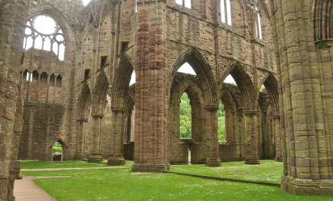 Bacteria that can help buildings heal themselves have been tested at Tintern Abbey in Wales and shown to improve the stone's microstructure without affecting colour or breathability. Image credit-  Nilfanion/Wikimedia, CC BY-SA 4.0 <https://creativecommons.org/licenses/by-sa/4.0>