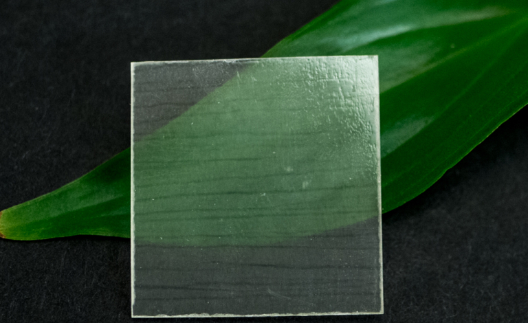 Transparent wood is created by stripping out lignin from wood and replacing it with a polymer. Image credit - WILEY‐VCH Verlag GmbH & Co. KGaA, Weinheim, licensed under CC BY-NC-ND 4.0