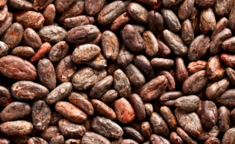 Flavanols, a substance found in cocoa, can improve cardiovascular functions. ©Shutterstock/Jiri Hera