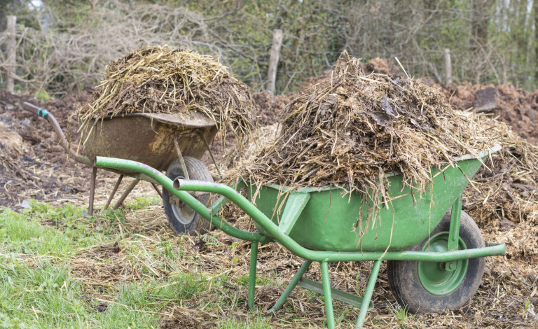 Farm waste is often full of nutrients that take time to break down before crops can use them. Image credit - Pxhere, licensed under CC0
