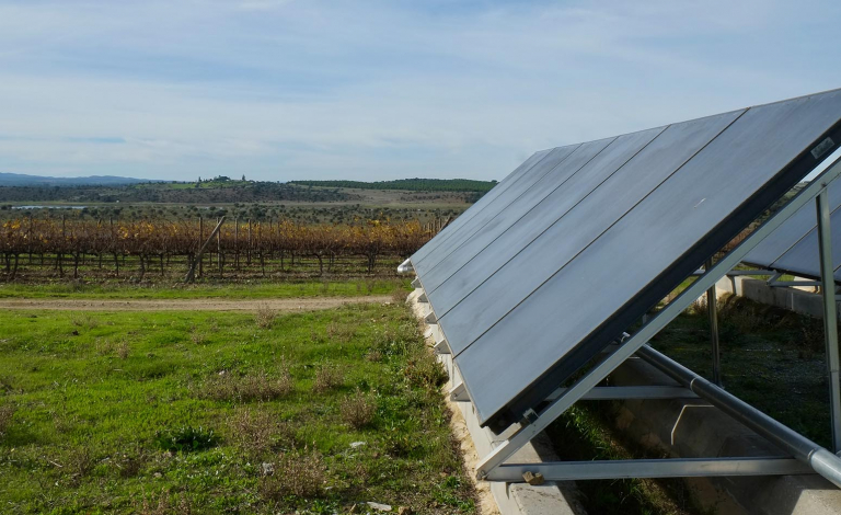 Viticulture is a good starting point for community-based energy initiatives, according to researchers, as it is both energy-intensive and vulnerable to climate effects. Image credit - Esther Marín-González