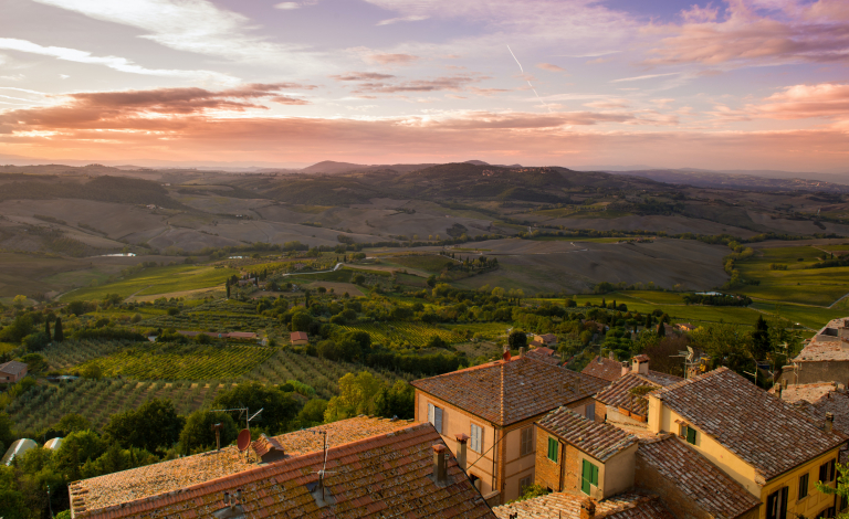 New techniques aim to help Mediterranean wine makers and olive oil producers become resilient against climate change. Image credit: Łukasz Czechowicz/Unsplash