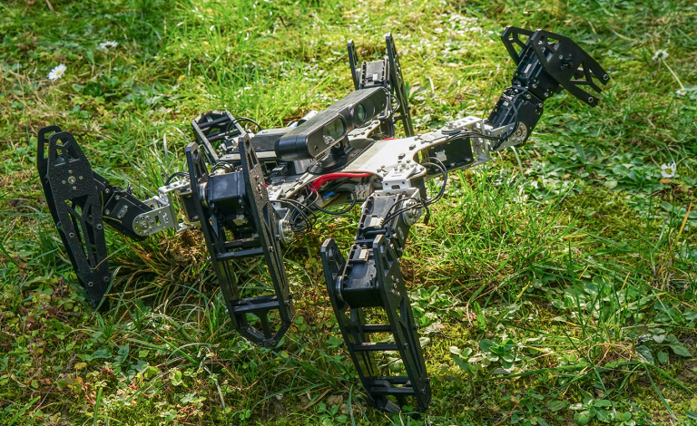 In trials, the ResiBot robot learned to walk again in less than two minutes after one of its legs was removed. Image credit - Antoine Cully / Sorbonne University