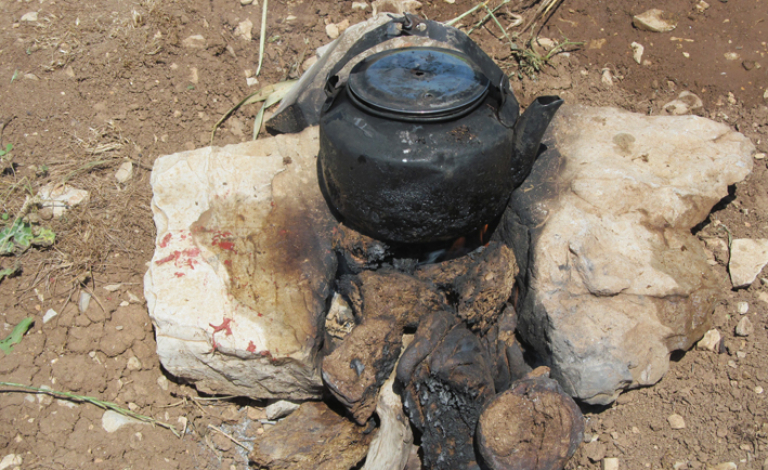Dried-out dung burns longer than wood and is still used as a fuel today. Image credit - Dr Marta Portillo