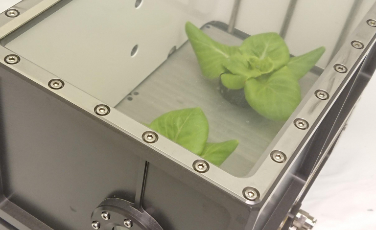 The prototype space greenhouse developed by the TIME SCALE project showed that it is possible to recycle nutrients and water to grow food. Image credit - Karoliussen