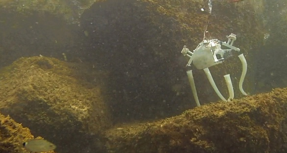 Dr Serchi and his team made a robot prototype that looks like an octopus with the hope that a final version can act as a deep sea repairman. Image credit: Age of Robots, M. Brega