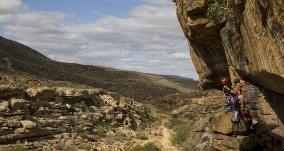 Rock hyraxes live in cliffs which can be difficult to get to, meaning it is less labour-intensive to use drones to collect images. Image: Brian Chase