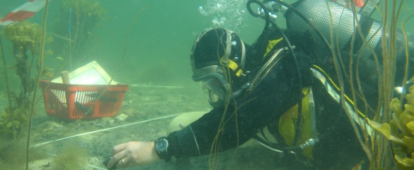 Archaeologist investigating a submerged prehistoric settlement site in Denmark. © The Viking Ship Museum