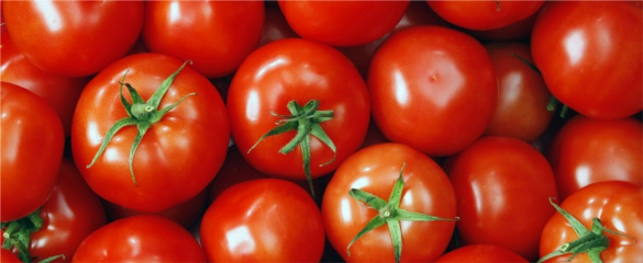 Tomato lacquer is being used to coat cans of food. © Shutterstock/denis09