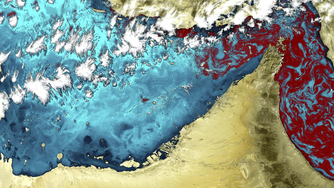 The coast of the United Arab Emirates hosts some of the largest desalination plants in the world. Whilst the water they release can affect the coastal ecosystem, both harmful and non-harmful algal blooms can also greatly affect the desalination plants. In particular, this local phenomenon, known as the 'red tide' – in which algae accumulate rapidly in the water column, resulting in colouration of the surface water – has recently affected the region's desalination plants. Satellite data can be used to identi